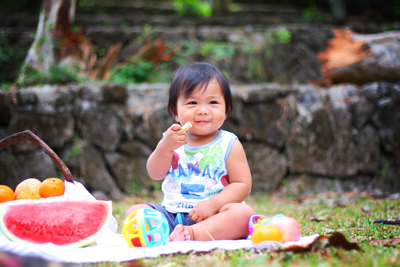 picnic 2659208 1280 - Nutrition and Its Impacts on Cognition and Emotion